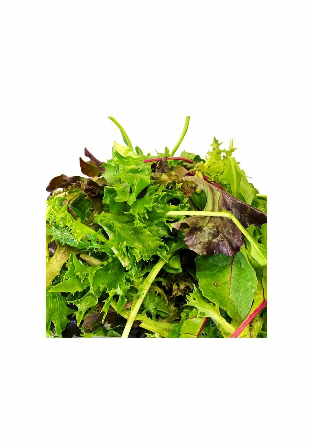 SALAD MIX (LOOSE)