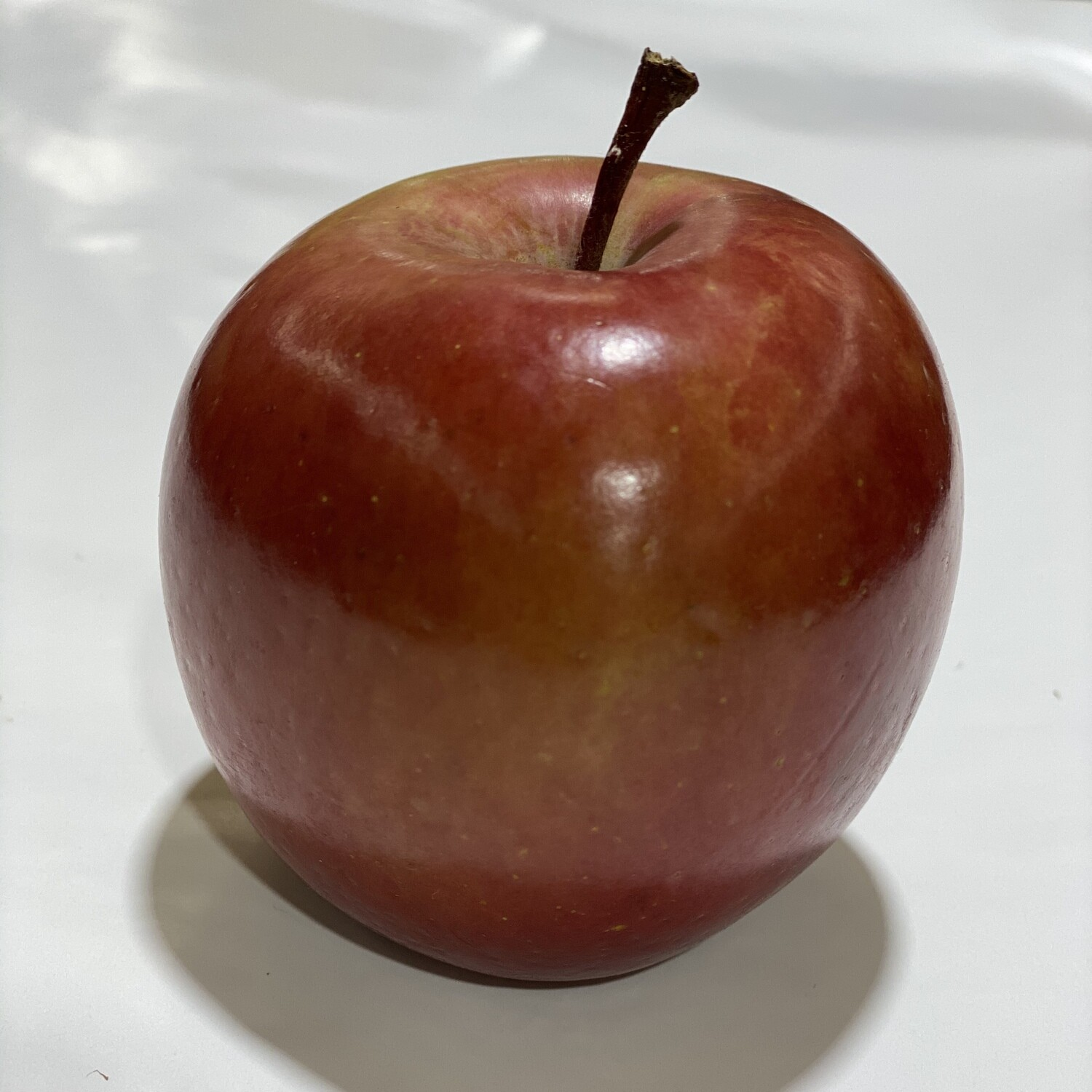 APPLE FUJI (EACH)