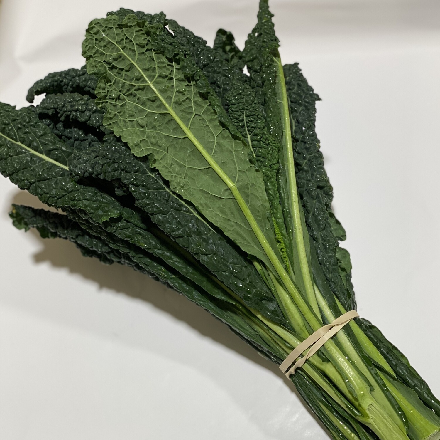 TUSCAN CABBAGE (KALE) (BUNCH)
