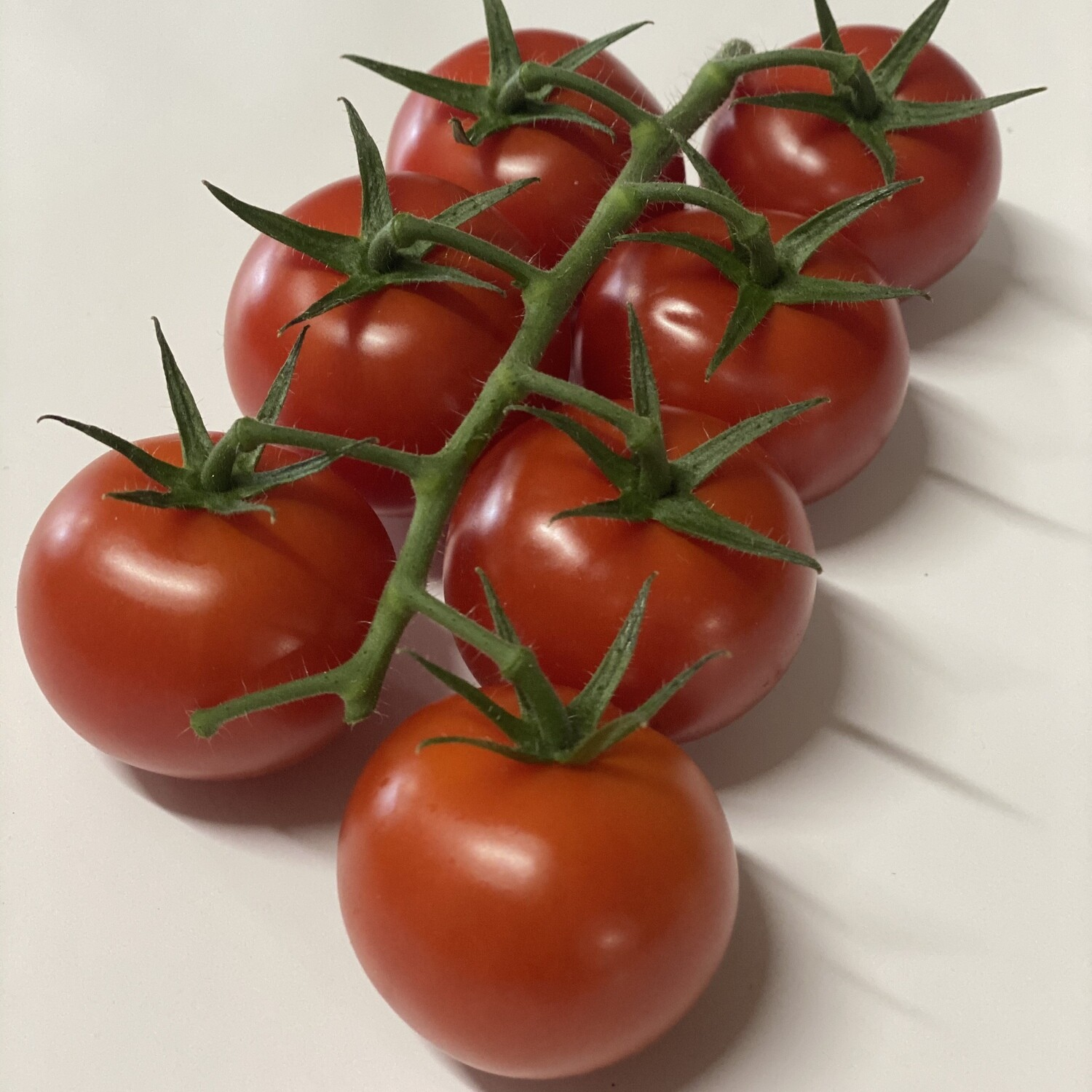 CHERRY TOMATOES TRUSS (8-12 count) PACK