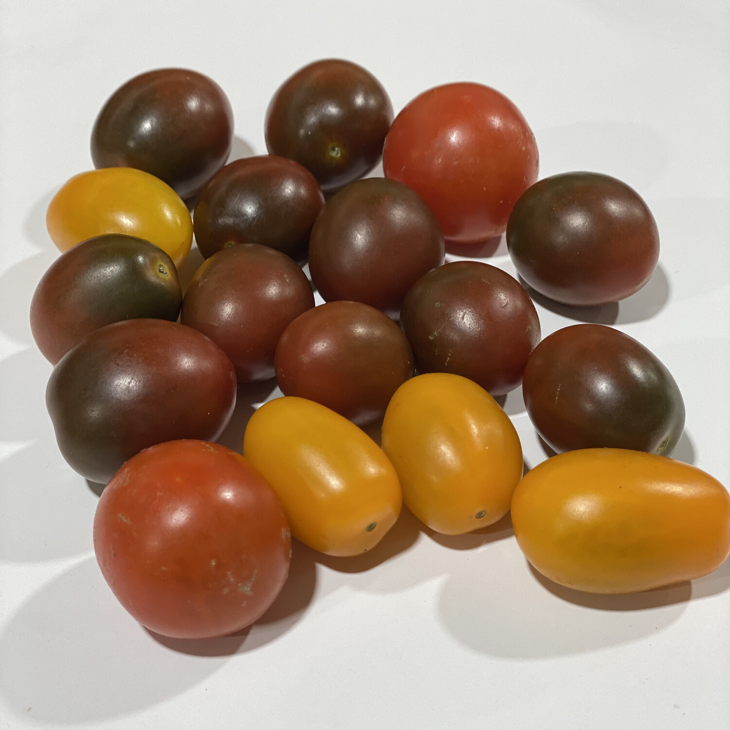 TOMATOES MEDLEY MIX (PUNNET)