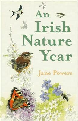 Irish Nature Year, An