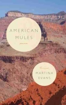 American Mules