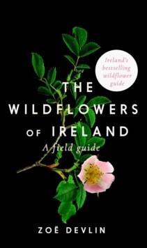 Wildflowers Of Ireland