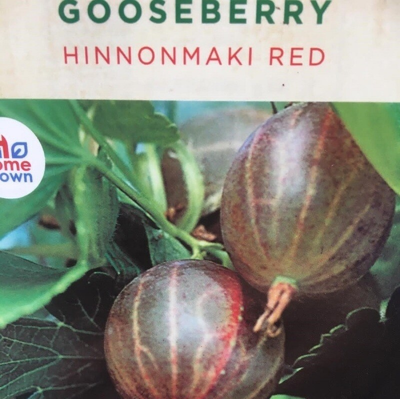 Gooseberry Hinnonmaki Red 3L