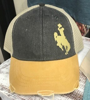 Hat/Wyoming Steamboat
