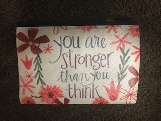 zipper pouch/vinyl/you are stronger saying