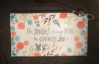 zipper pouch/large/vinyl/the smallest things saying