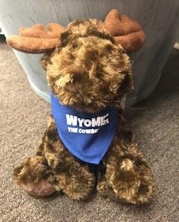Wyoming souvenir/Stuffie/Moose/Wyoming bandana