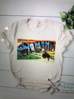 Apparel/graphic tee/Wyoming/sizes below in description