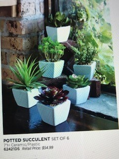 Home decor by Melrose/succulent plant decor/set of 6/7""
