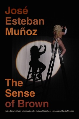 Sense of Brown, José Esteban Muñoz