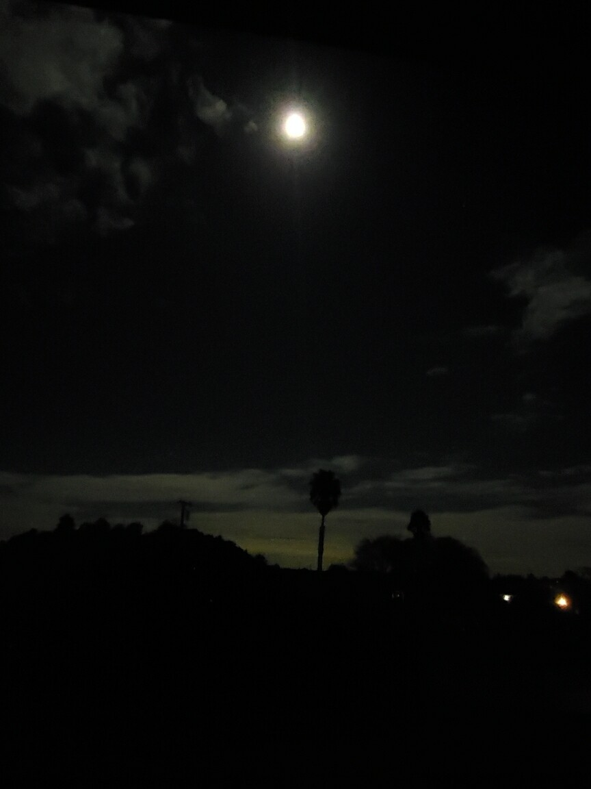 Full or New Moon Reading