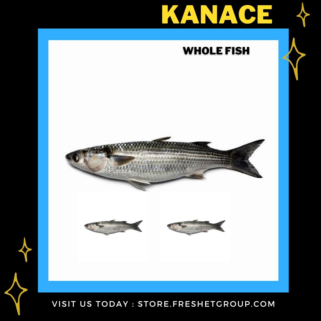 Kanace (Mullet) WHOLE fish