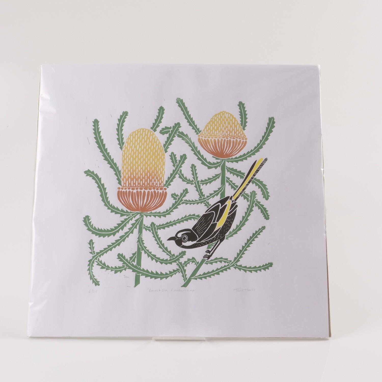 Banksia Hookeriana - Tina Hall