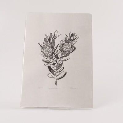 Tina Hall - Leucospermum