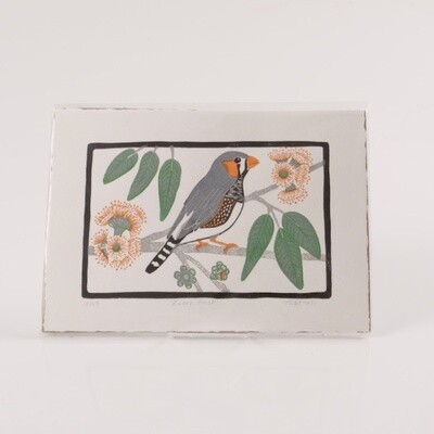 Zebra Finch - Tina Hall