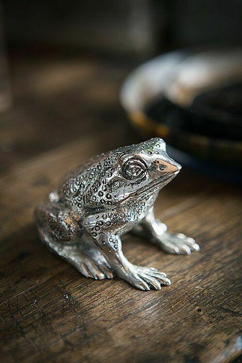Silver Frog Bottle Opener