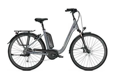 RALEIGH KINGSTON 9 GRY 500WH