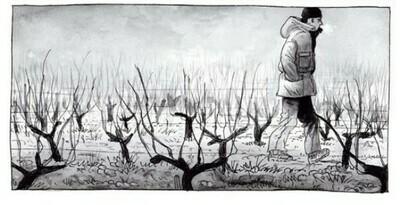 Pinot Noir, 'Litoral' Ventolera, Leyda Valley,Chile 2014