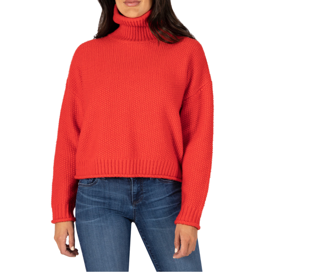 Red Hailey Turtleneck