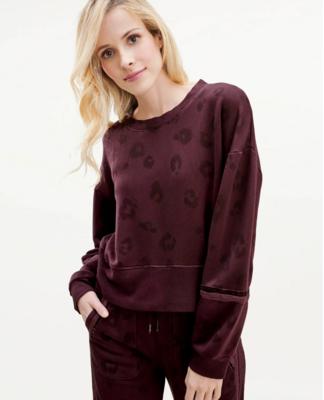 Cherry Leopard Pullover