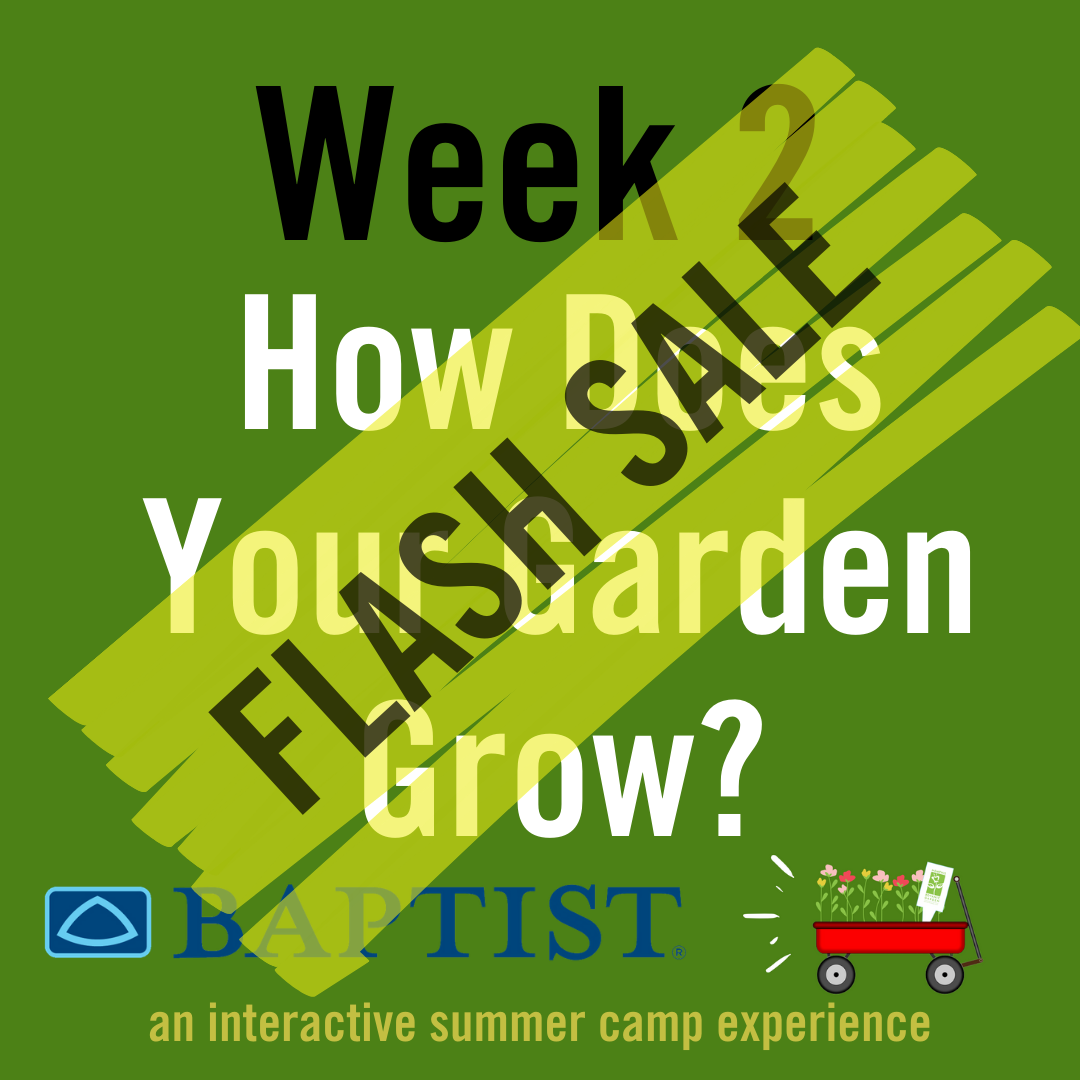 How Does Your Garden Grow? (Week 2)