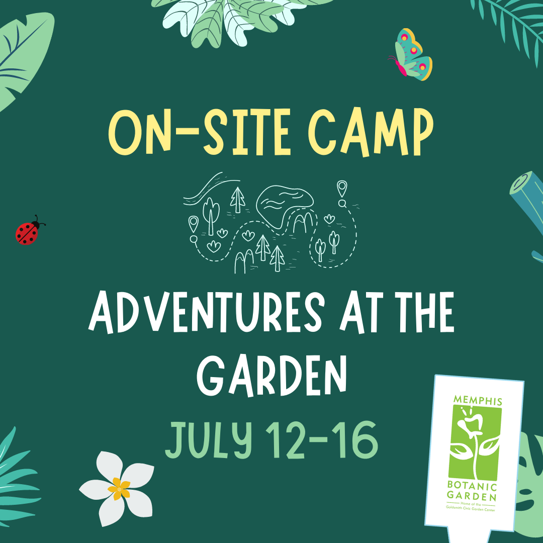 On-Site Camp July 12-16: Adventures at the Garden