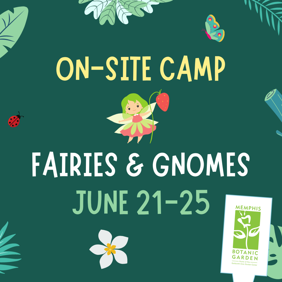 On-Site Camp June 21-25: Fairies and Gnomes