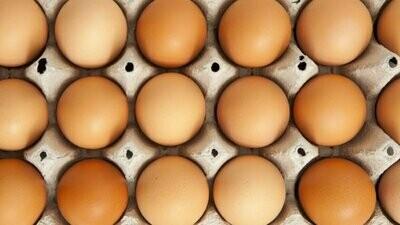Fresh chemical-free eggs