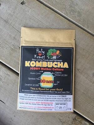Holy Kraut - Dried Black Kombucha Scoby  11g