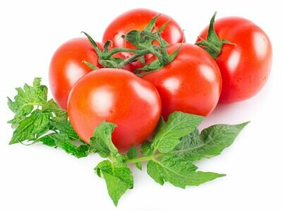Tomatoes - 2ltr