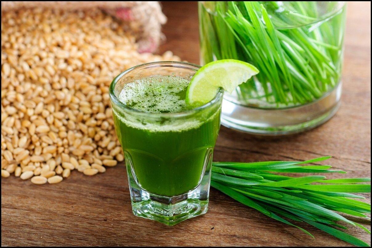 Trudy's  - Organic Wheatgrass Juice