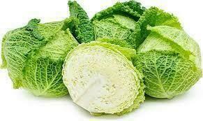 Cabbage - Savoy