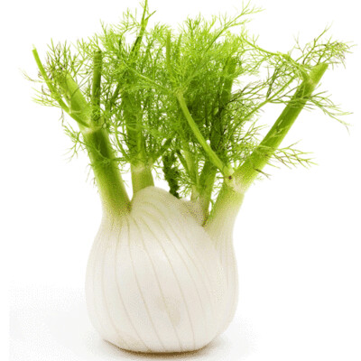 Fennel/Anise