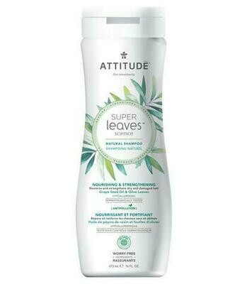 Attitude - Nourishing & Strengthening (473ml)