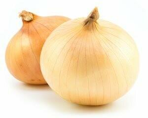 Spanish Onions (LB)