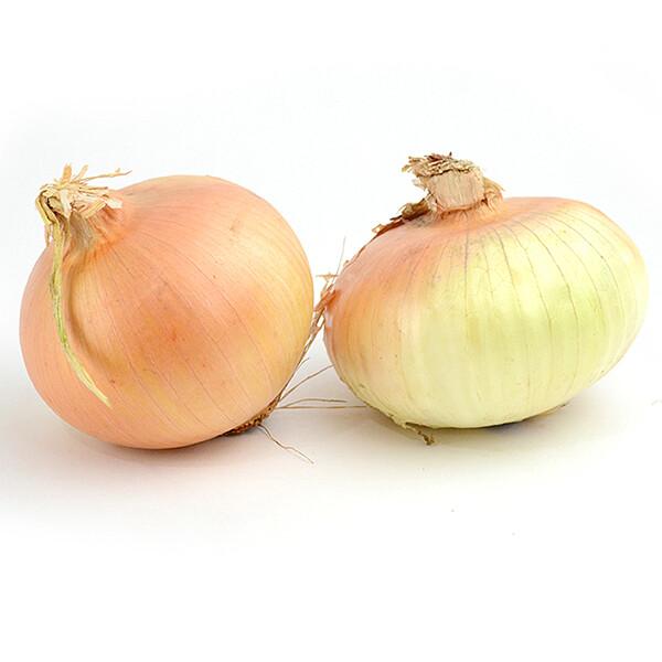 Sweet Onions (LB)