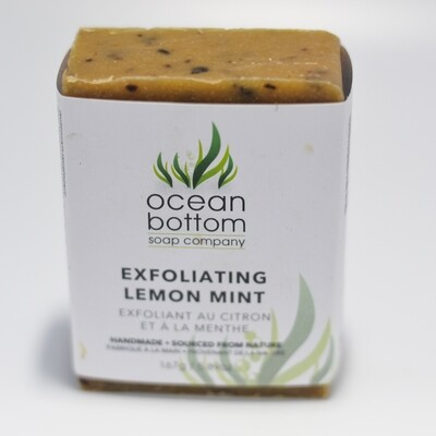 Ocean Bottom - Exfoliating Lemon Mint