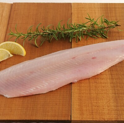 Dockside Fisheries - Pickerel 1LB