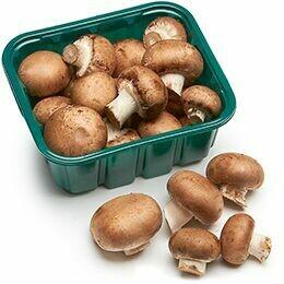 Highline Mushrooms - Mini Bella 8oz