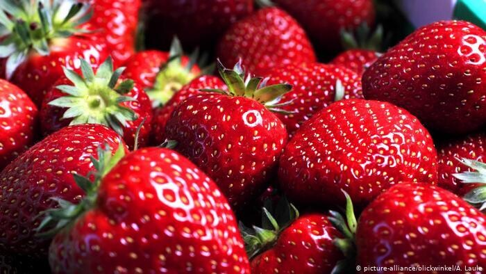 Field Strawberries