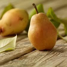 Bosc Pears - bag/4ct