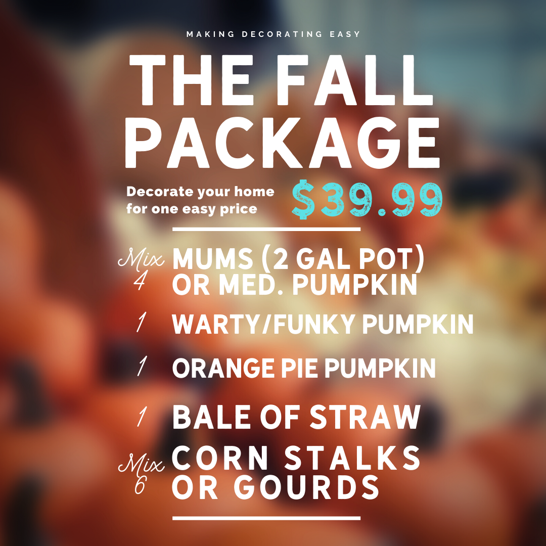 Fall Package