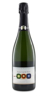 Champagne Françoise Bedel Entre Ciel et Terre 75 cl