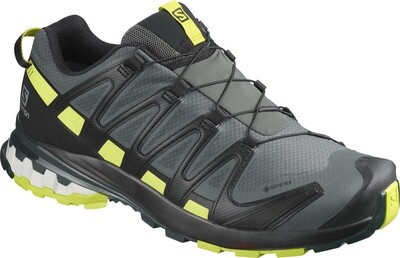 Salomon Freizeit / Walking GTX