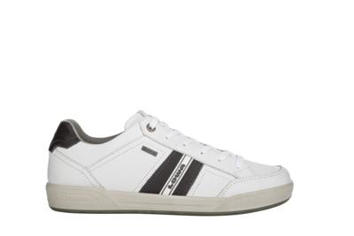 Lowa Sneaker GTX