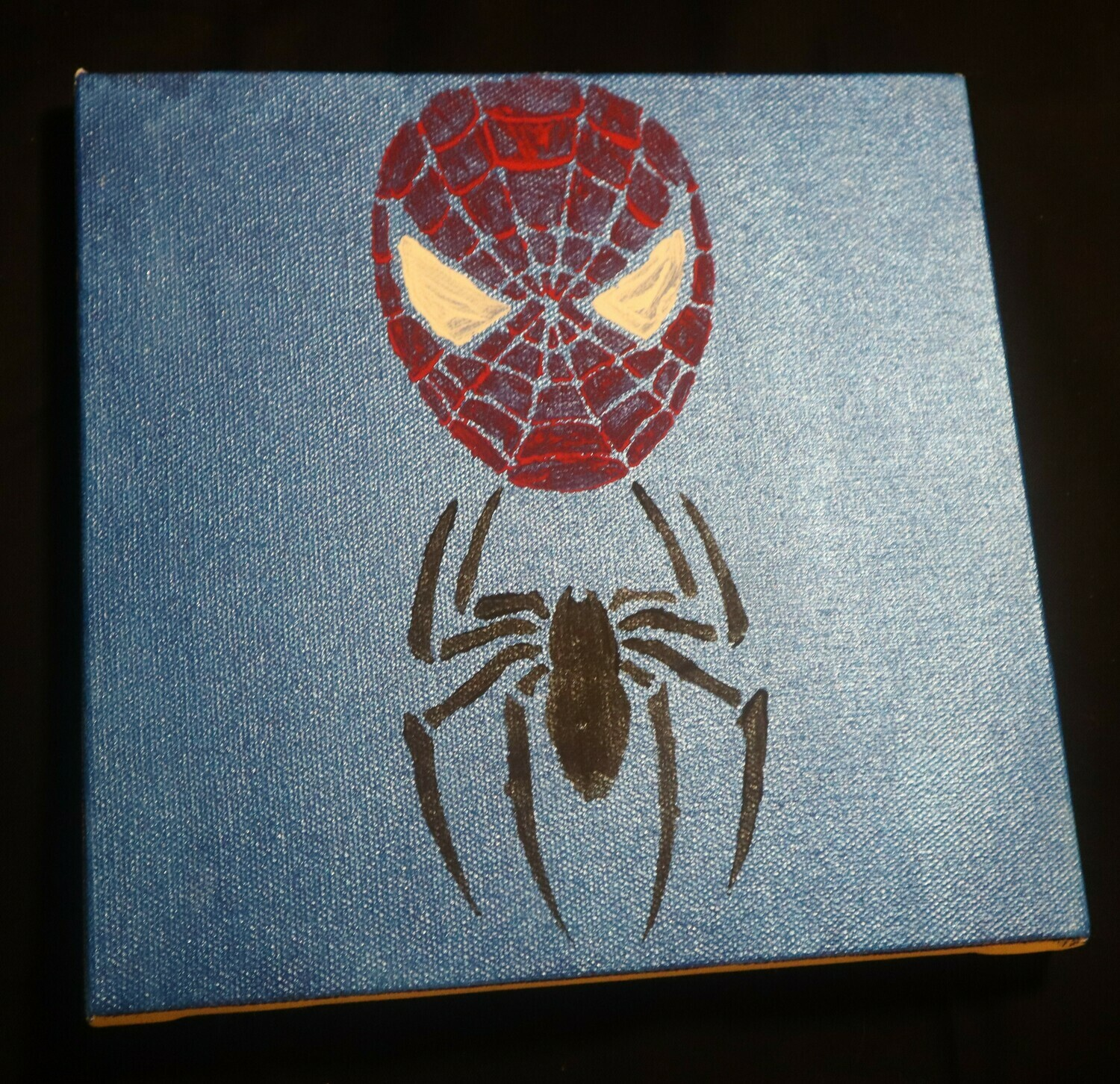 Spiderman Canvas Painting