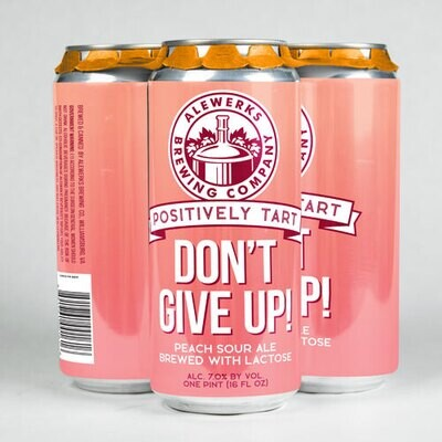 Don't Give Up! 4Pack 16oz Cans