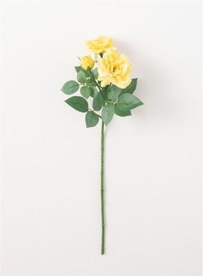 Wild Rose - Yellow